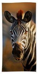 Zebra Close-up Portrait Beach Towel