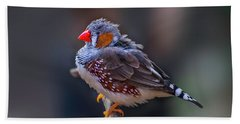 Zebra Finch Beach Towel