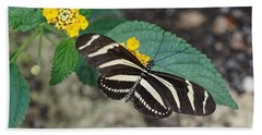 Beach Towel featuring the photograph Zebra Longwing Butterfly - 1 by Paul Gulliver