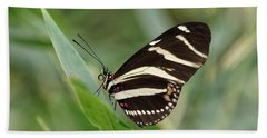 Beach Towel featuring the photograph Zebra Longwing Butterfly - 2 by Paul Gulliver