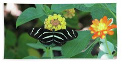 Zebra Longwing Butterfly Heliconius Charitonia Beach Towel