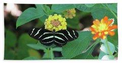 Zebra Longwing Butterfly Heliconius Charitonia Beach Sheet