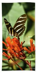 Zebra Longwing Beach Towel