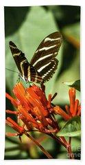 Zebra Longwing Beach Sheet