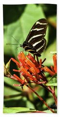 Zebra Longwing No.2 Beach Towel
