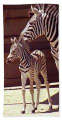 Zebra Mom And Baby Beach Towel