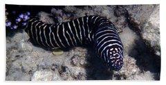 Zebra Moray Beach Sheet