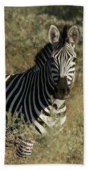 Beach Towel featuring the photograph Zebra Portrait by Karen Zuk Rosenblatt