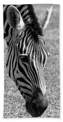 Zebra Portrait Beach Sheet