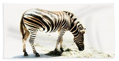 Beach Sheet featuring the photograph Zebra Stripes by Stephen Mitchell