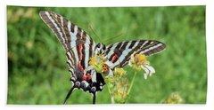 Zebra Swallowtail And Ladybug Beach Sheet