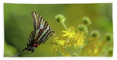 Beach Towel featuring the photograph Zebra Swallowtail Butterfly by Lori Coleman