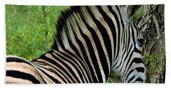 Zebra Walks Beach Sheet