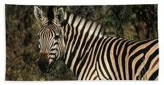 Zebra Watching Beach Towel