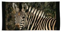 Zebra Watching Sq Beach Towel