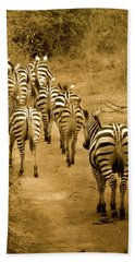 Zebras Heading Home - Antique Beach Towel