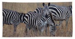 Zebras Walking In The Grass 2 Beach Towel by Exploramum Exploramum