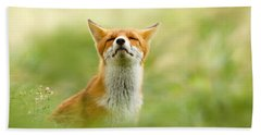 Zen Fox Series - Zen Fox Does It Agian Beach Towel by Roeselien Raimond