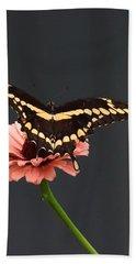 Zinnia With Butterfly 2708  Beach Towel
