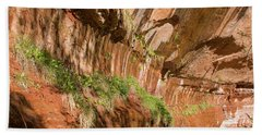 Beach Towel featuring the photograph Zion--lower Emerald Pools Trail by PJ Boylan