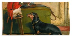 Ziva A Badger-dog Belonging To The Hereditary Prince Of Saxe Coburg-gotha Beach Towel