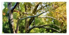 Zoo Trees Beach Towel