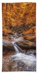 Amicalola Falls Beach Towel