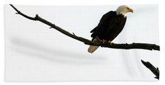 Bald Eagle 120501 Beach Towel
