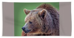 Brown Bear 5 Beach Sheet
