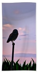 Burrowing Owl On A Stick Beach Sheet