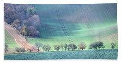 Beach Towel featuring the photograph Autumn In Moravia 1 by Dubi Roman