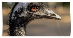 Beach Towel featuring the photograph Emu By Itself Outdoors During The Daytime. by Rob D Imagery