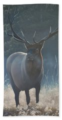 First Light - Bull Elk Beach Towel