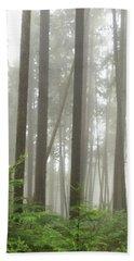 Beach Towel featuring the photograph Foggy Forest by Karen Zuk Rosenblatt
