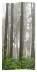 Foggy Forest Beach Sheet