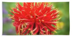 Glorious Sho-n-tell Dahlia Beach Sheet