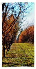 Beach Towel featuring the photograph Hazelnut Orchard 21578 by Jerry Sodorff