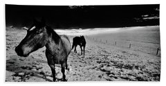 Beach Towel featuring the photograph Horses On The Palouse by David Patterson