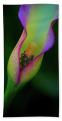 Beach Towel featuring the photograph Lily  by John Rodrigues