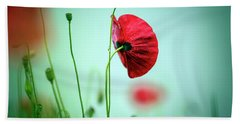 Morning Poppy Flower Beach Towel