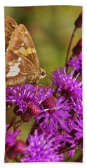 Moth On Purple Flowers Beach Towel