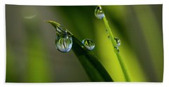 Rain Drops On Grass Beach Towel