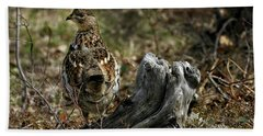 Ruffed Grouse 50701 Beach Sheet