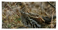 Ruffed Grouse 50702 Beach Sheet