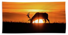 Sunrise Elk Beach Towel