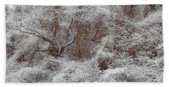 Beach Sheet featuring the photograph The Forest Hush by Lynda Lehmann
