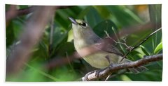 Thick-billed Vireo Beach Towel