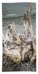 Beach Towel featuring the photograph Wood Log In Nature No.35 by Juan Contreras