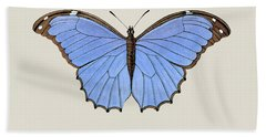 19th Century Butterfly And Moth Natural History Illustration Beach Towel