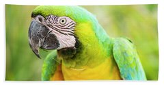 Beach Towel featuring the photograph Beautiful Macaw Bird by Rob D Imagery